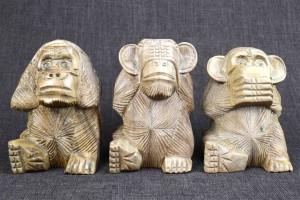 les singes de la sagesse immobilier-comapny.com