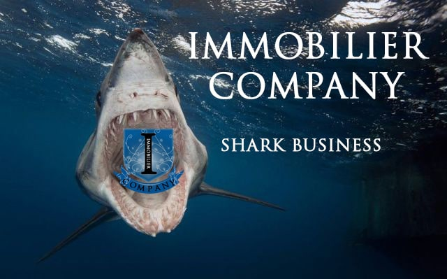 Introduction Podcast immobilier company