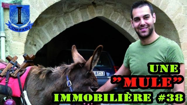 """Une """"Mule"""" Immobilière #38"""
