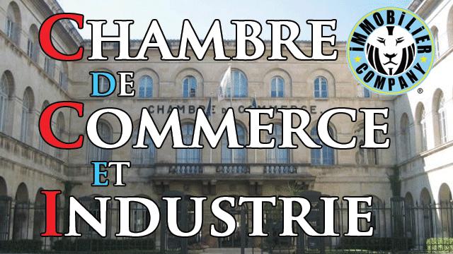 La CCI Chambre de Commerce et d'industrie